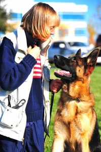 German Shepherd Protection Dog VIP Yvonne