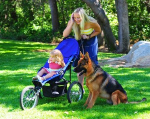 Family outing to the park with a well-trained German Shepherd Dog